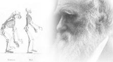 Charles Darwin, el padre de la evolución (elmundo.es)