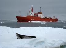 El buque Hespérides junto a una foca leopardo. | Carlos Duarte / CSIC
