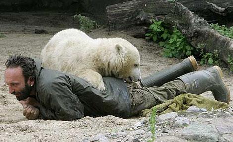 Knut y su cuidador, Thomas Doerflein, juegan en 2007. | Afp