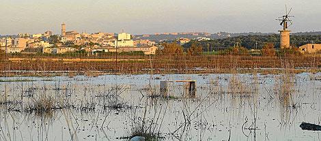 Vista del Pla de Sant Jordi de nuevo cubierto de agua tras un temporal y con los restos de un viejo molino.| A.V.