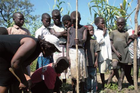 Estudiantes plantan árboles en Mozambique. | Fotos: IPADE
