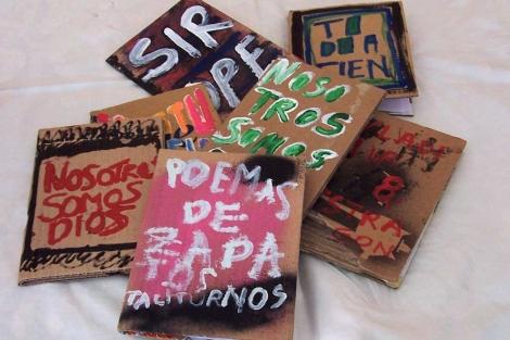 Las portadas de los libros cartoneros. | Sara López Villanueva