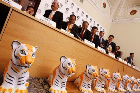 Cumbre Global del Tigre. | Foto: Ap