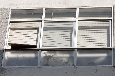 Ventana de la habitación donde se encontraba la mujer cuando falleció, en su casa de Lugo. | Eliseo Trigo