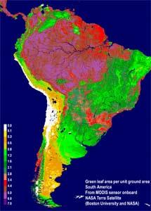 Superficie verde en Sudamérica. | NASA