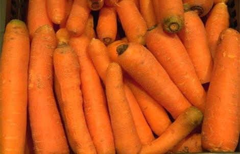 En 2010 se recogieron 420.000 toneladas de zanahorias en España. | Pep Vicens
