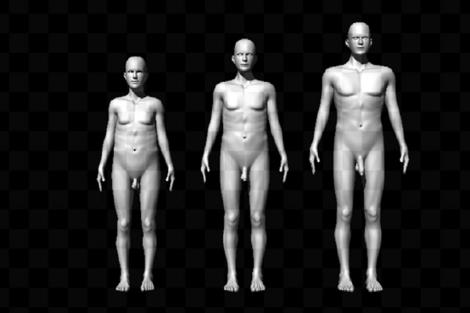 Modelos masculinos usados en el estudio. | PNAS
