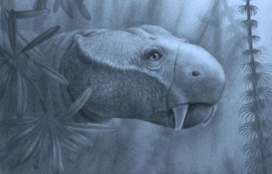 Reconstrucción del anomodonto 'Dicynodon lacerticeps'.| M. Donnelly.