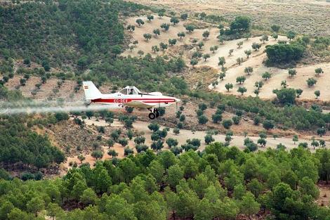 Una avioneta fumiga árboles con procesionaria.| El Mundo