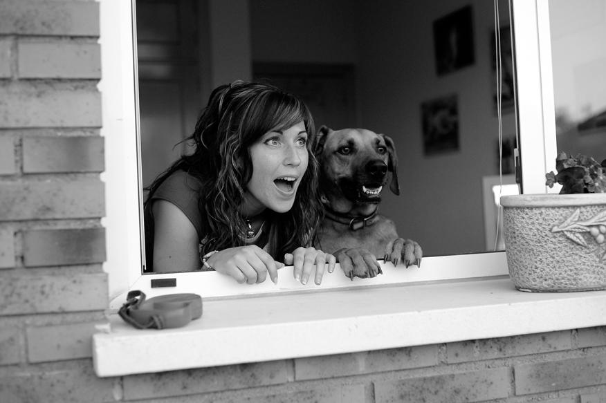 İspanyolca Çeviri Köpek Eğitmeni
