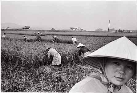 Impacto por Cambio climatico China_0001RGB