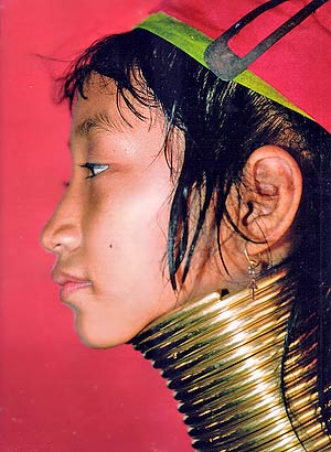 http://estaticos03.cache.el-mundo.net/yodonablogs/imagenes/2006/01/27/1138361834_0.jpg